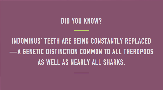 Did You Know? - Indominous Rex