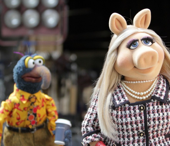 Here is Your First Look at ABC's 'The Muppets'