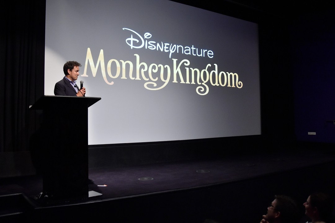 Disneynature Holds Special Screening of 'Monkey Kingdom' in NYC