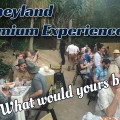 Disneyland Premium Experience – What Would You Want?