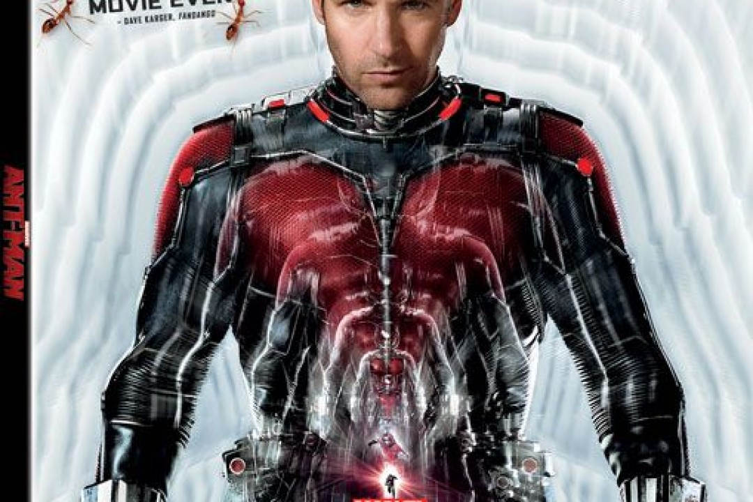 Actor Paul Rudd Shares His Thoughts On What It Was Like To Work On Marvel's 'Ant-Man'