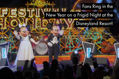 Fans Ring in the New Year on a Frigid Night at the Disneyland Resort!