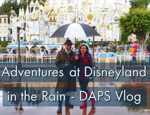 Adventures at Disneyland in the Rain  – DAPS Vlog