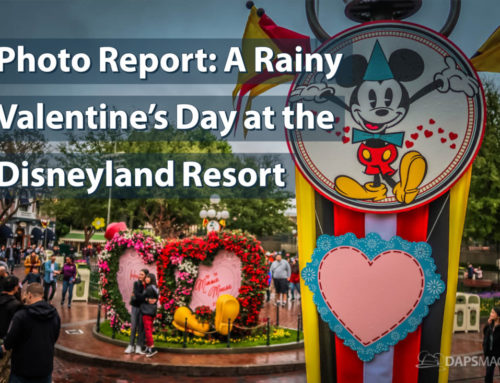 Photo Report: A Rainy Valentine's Day at the Disneyland Resort