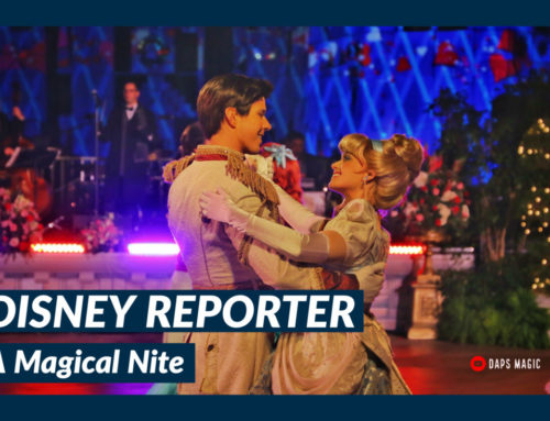 A Magical Nite – DISNEY Reporter