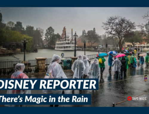 There's Magic in the Rain – DISNEY Reporter
