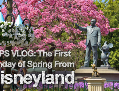 The First Sunday of Spring from Disneyland – DAPS Vlog