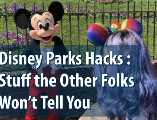 Disney Parks Hacks : Stuff the Other Folks Won't Tell You
