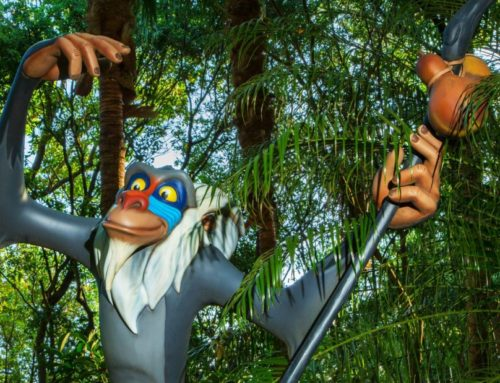 Rafiki's Planet Watch Reopening at Disney's Animal Kingdom This Summer!