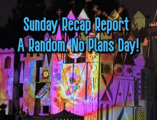 Sunday Recap Report – A Random, No Plans Day!