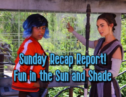 Sunday Recap Report – Fun In The Sun And Shade