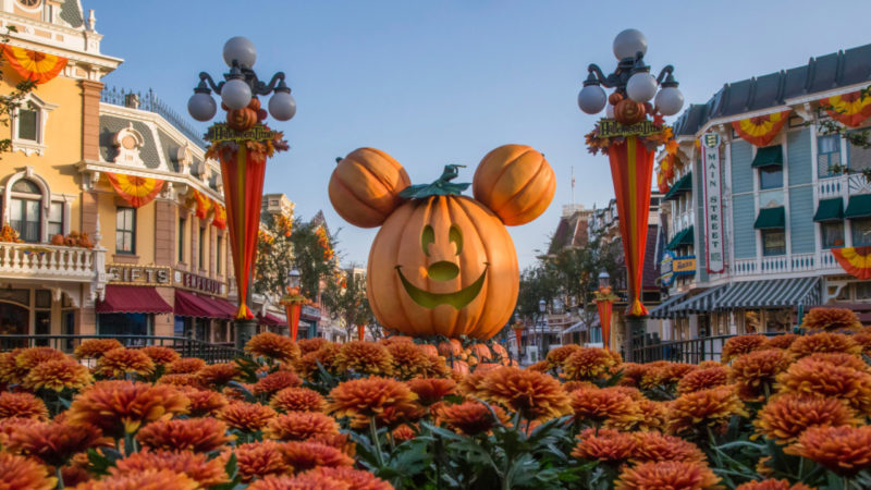 Mickey Mouse Jack-O-Lantern at Disneyland