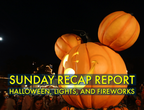 Sunday Recap Report – Halloween, Lights, and Fireworks